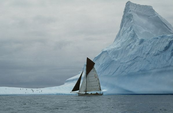Curlew and Iceberg